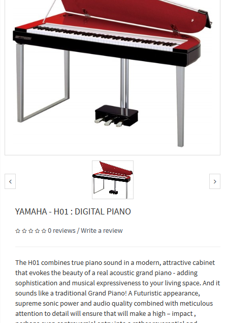 A Leading Musical Instruments Company Ecommerce Website